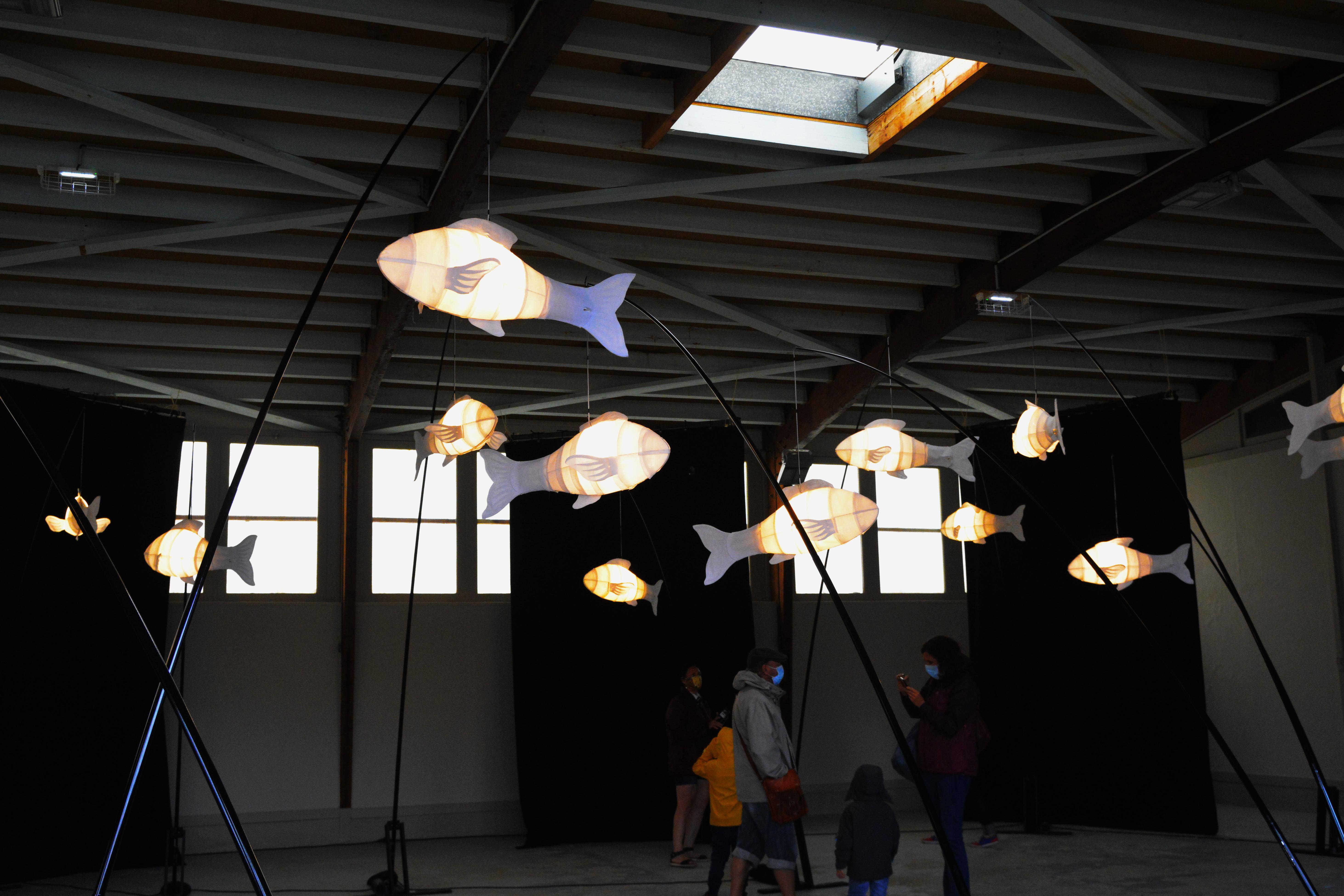 les-poissons-de-DMestanza-1